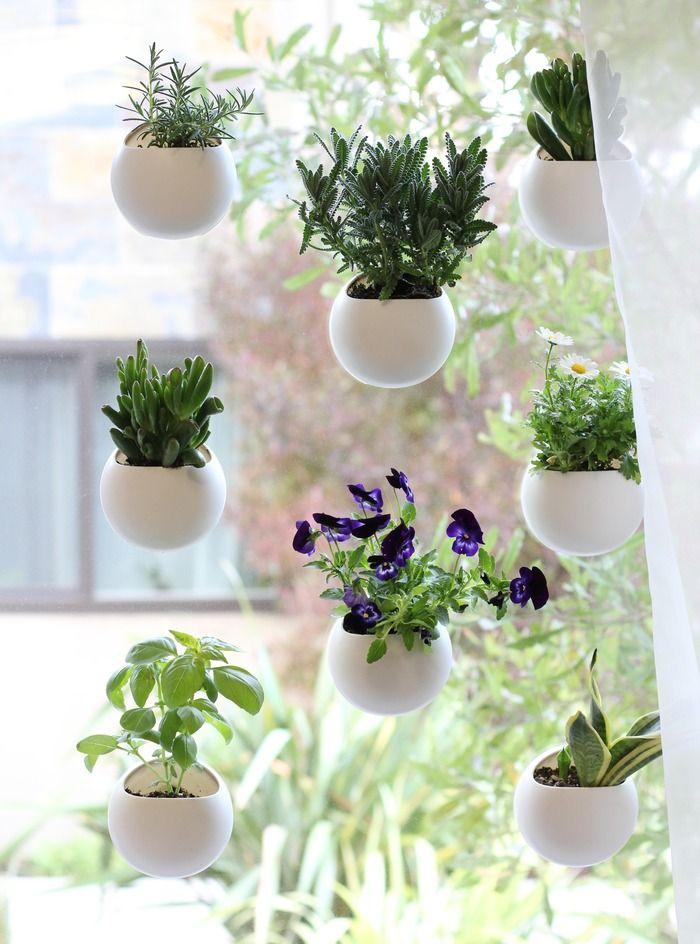 Indoor Hanging Garden Ideas 30 amazing diy indoor herbs garden ideas Beyond The Sill Turn Your Window Into A Stylish Garden