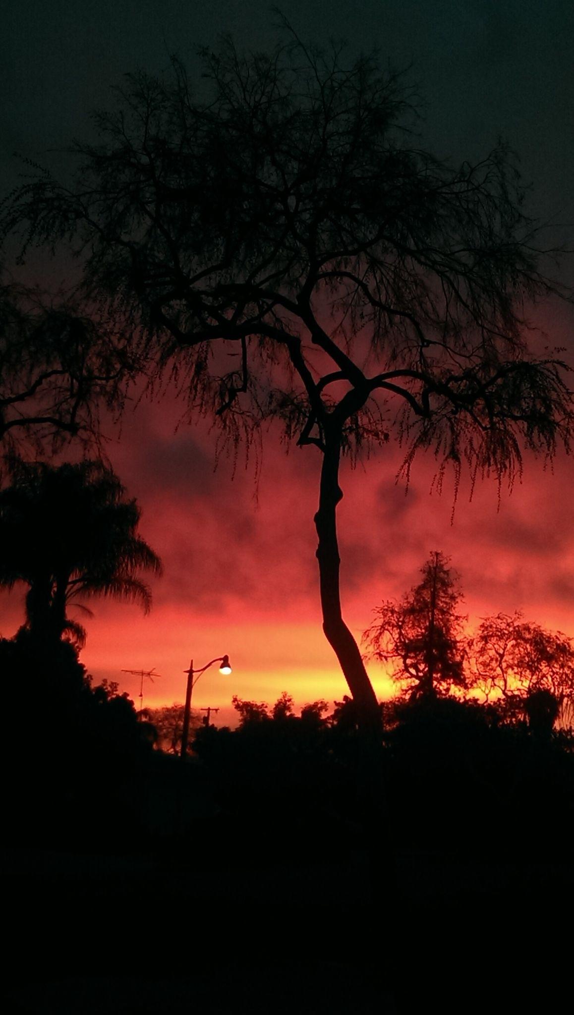 Sunset ☀️