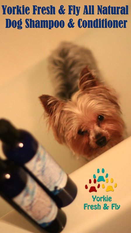 Featured Products Yorkie Fresh Fly Natural Pet Hair Products