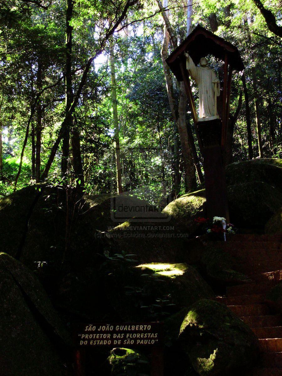 Horto Florestal 14 Sao Joao Gualberto by Flame-Echidna.deviantart.com on @deviantART