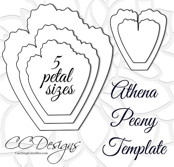 Giant Paper Peonies, Printable PDF Flower Templates, Peony PDF ...