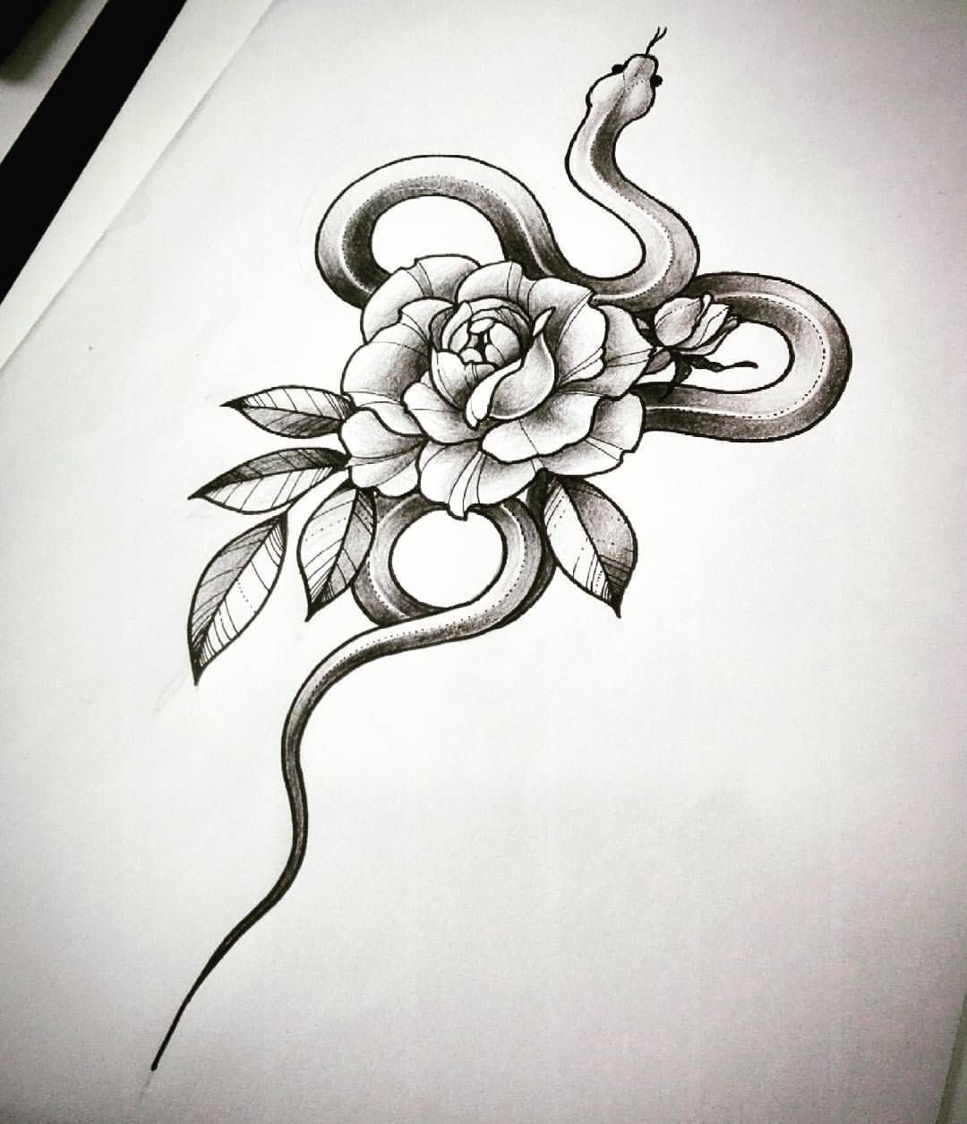"Laura Zuffo on Instagram: ""#drawing #drawingfortattoo #sketch #snake #snakesketch #rose #roseandsnake #roseandsnaketattoo #snakeandflowers #snakeandrose…"""