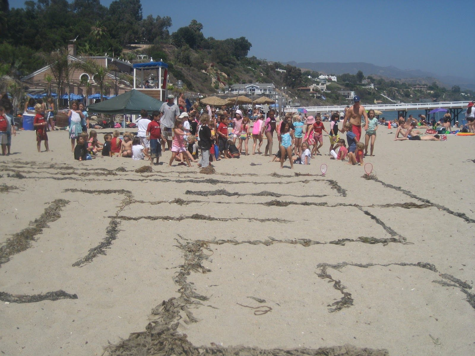That fun beach games for teens pity