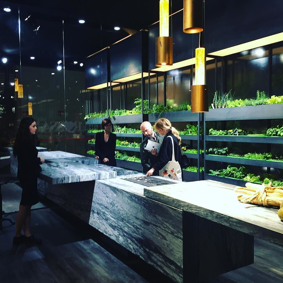 Сегодня вы можете вырастить ваши любимые овощи и зелень на собственной кухне! by interioburo
