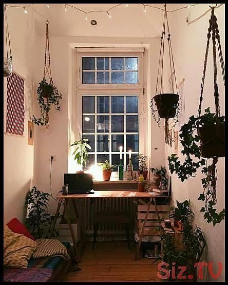 Kleines aber gem tliches WGZimmer mit vielen gr nen Pflanzen plants wgzimmer wgleben wgliebe einrichtung Kleines aber gem tliches WGZimmer mit vielen gr nen Pflanzen plan...