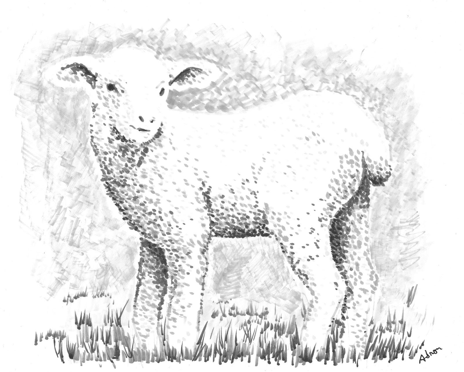 How To Draw A Fuzzy Lamb Worksheet And Lesson