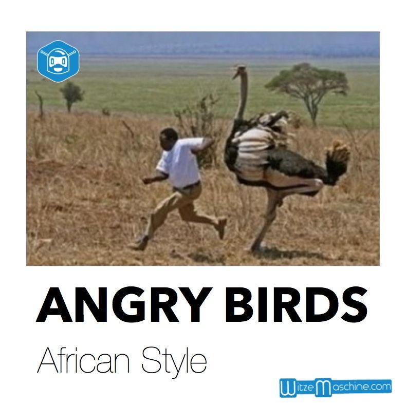 Angry Birds African Style Schwarzen Witze Lustig