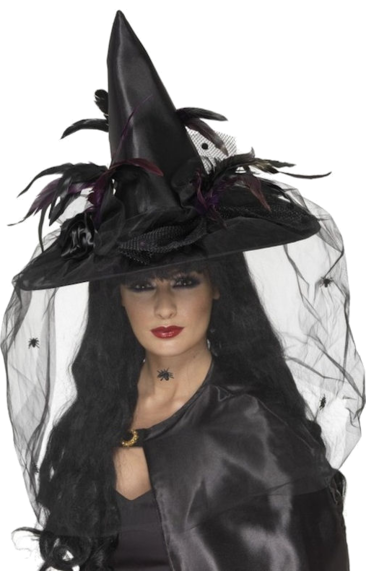 dc917b5c Black Spell Caster Hat with Veil | witch costumes | Witch costumes ...