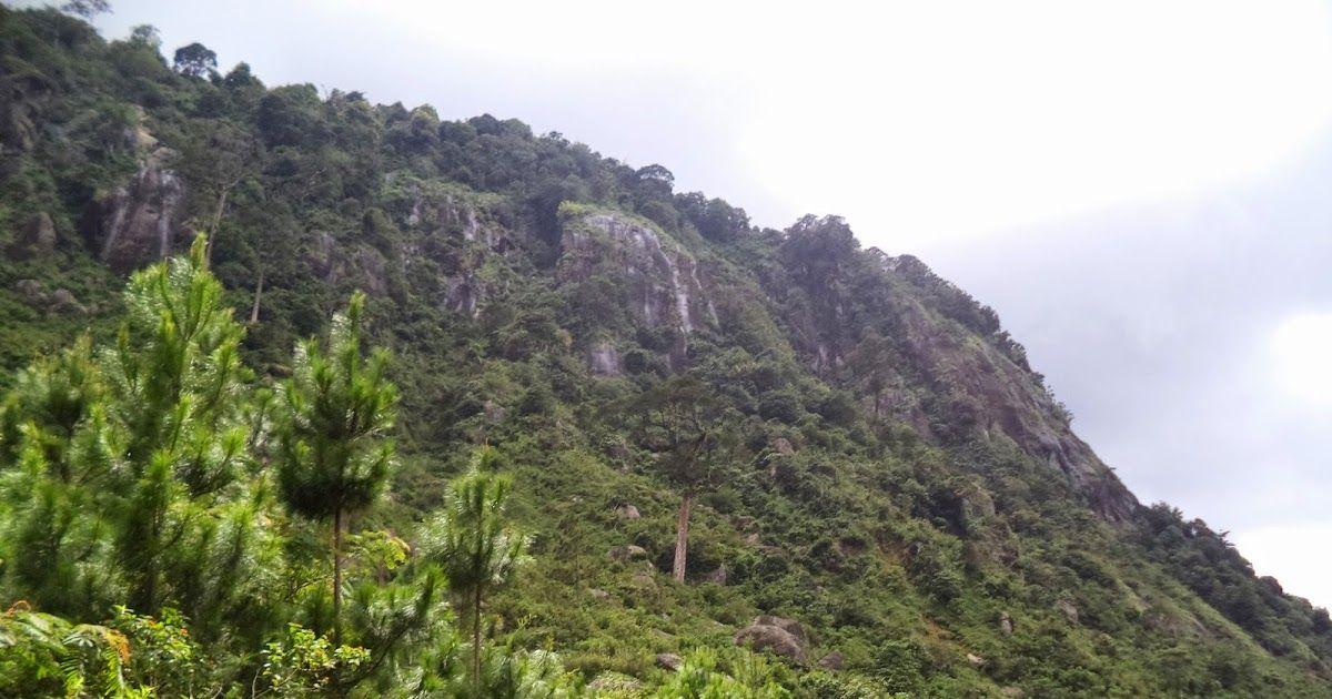 12 Pemandangan Alam Bukit Pemandangan Alam Dari Atas Bukit Steemit Download Menikmati Pemandangan Alam Nan Elok Di Bukit Pakis Di 2020 Pemandangan Alam Danau Toba