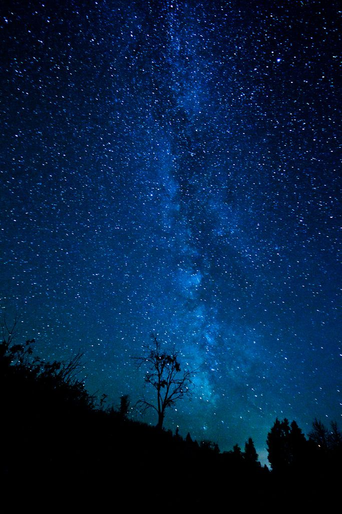 I've been to many remote locations, but never have I seen a sky like this.  I could have photographed the Milky Way all night.  It's a treat when the sky is so amazing it becomes part of your landscape photography.  I was truly in awe.    Twitter Blog