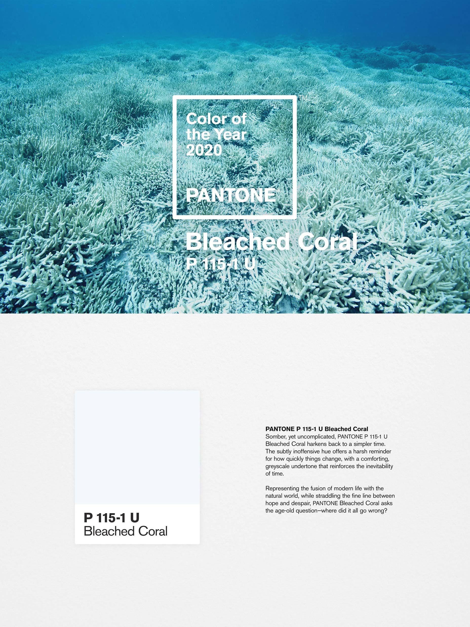 Unofficial Pantone Color for 2020 Revealed Pantone color