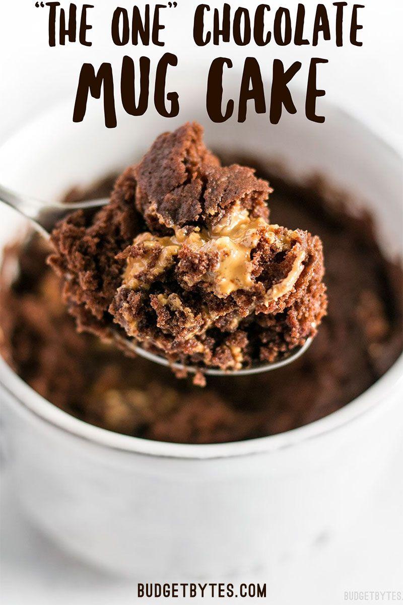 The One Chocolate Mug Cake - with VIDEO - Budget Bytes