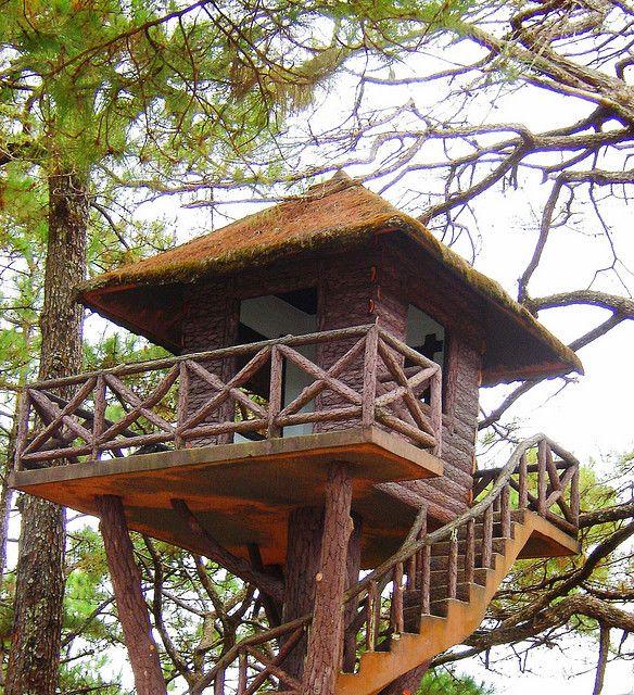 Baguio Treehouse บ้านท่อนไม้