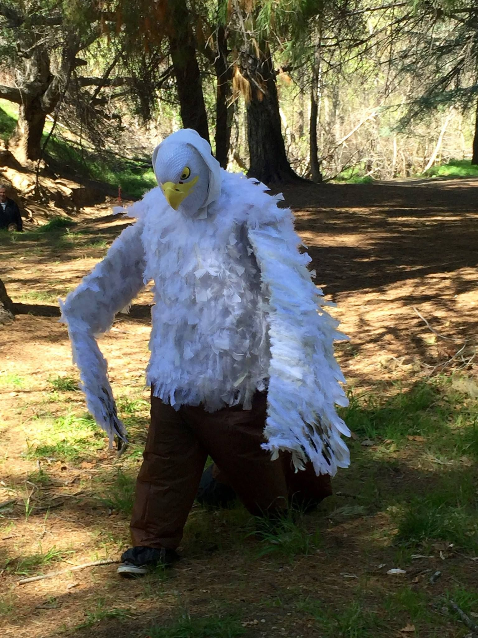 Buckbeak Costume From Hagrids Save The Magical Creatures Campaign