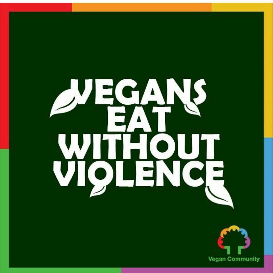 """""""Regram from @vegancommunity  #spotthevegan #eachindividuallifematters #vegan #veganlife #veganism #vegansofig #vegansunite #plantbased #plantstrong…"""""""