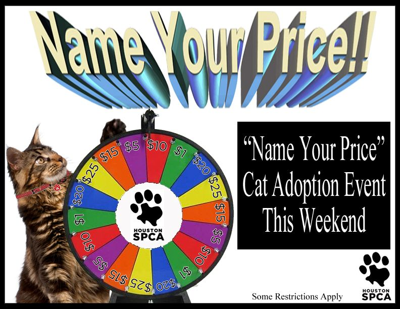 The Houston Spca Knows You Can T Put A Price On Love But They Re
