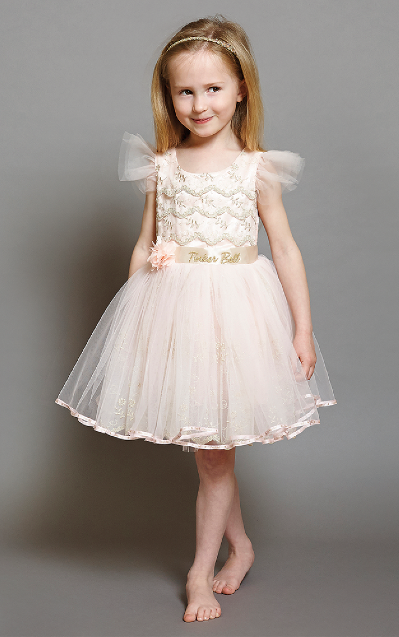 85cfafd70c261 Girls Luxury Disney Boutique Tinkerbell Special Occasion Dress. A delicate  vintage party dress with all