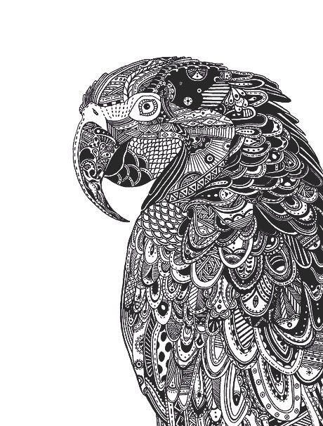 art bird drawing mandala first set on favim com coloring