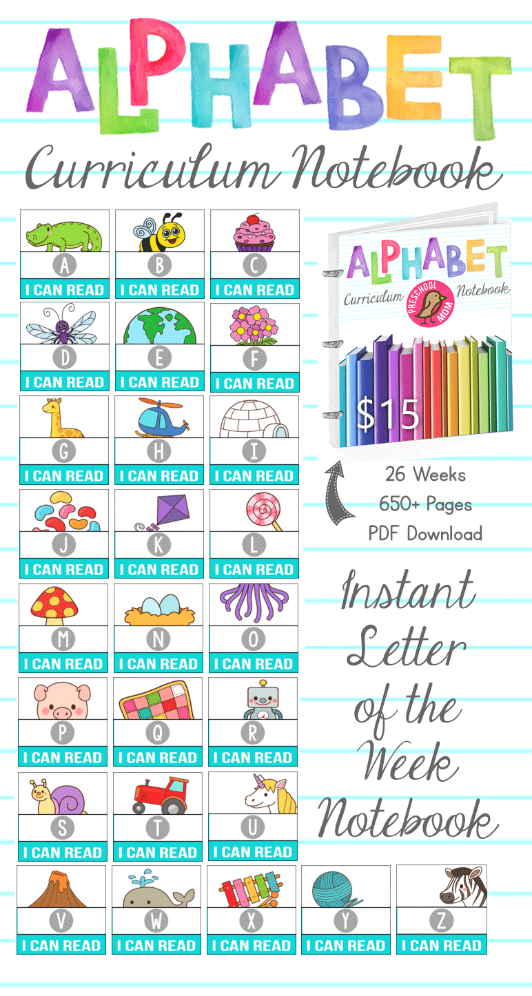 $15 Alphabet Curriculum Notebook!  Download this 650 page letter of the week curriculum and you're set for 26 weeks of alphabet activities.  Simple, Low Prep, Minimal Ink, and Completely Organized on a 4 day schedule.  Print and Place in a Binder....it's really that simple!  View a Sample Week Here: http://craftyclassroom.com/product/letter-of-the-week-curriculum-binder/