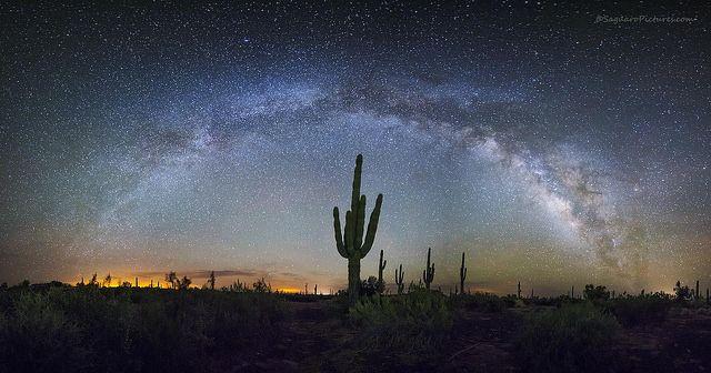 Stunning Desert Night Sky