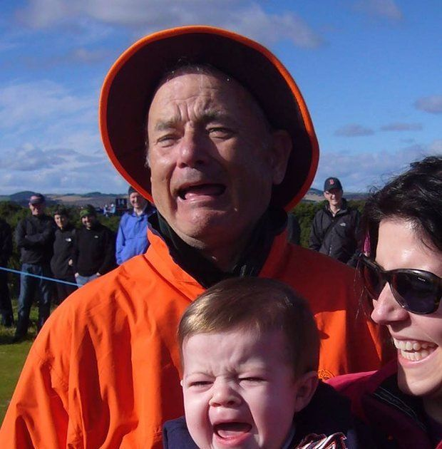 Is This a Picture of Bill Murray or Tom Hanks? The World Needs to Know. https://plus.google.com/+KevinGreenMySOdotCom/posts/LA9ePd53SQU