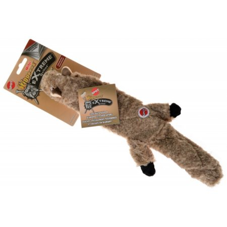 Pets Dog Toys Squirrel Your Pet