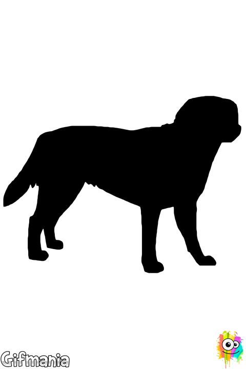 Dibujo De Labrador Retriever Para Colorear Dibujos De Perros Perros Dibujos