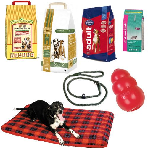Marketing Money Hotels Dog Supplies Dog Supplies Pet Supplies Plus Buy Pets