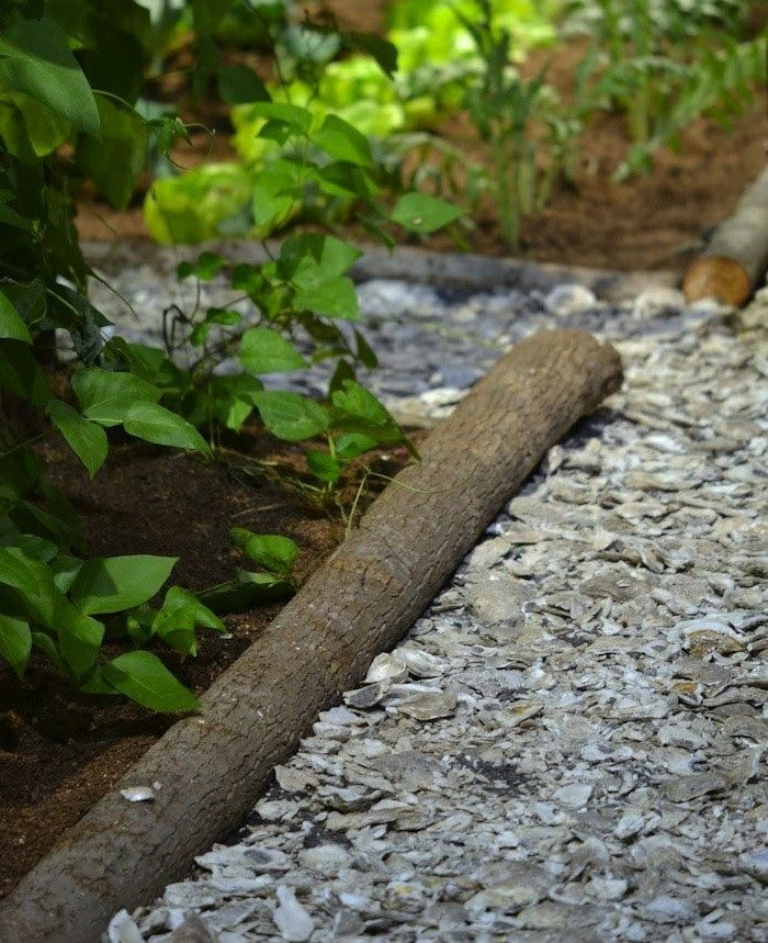 Hardscaping 101 Seashell Paths And Driveways Oyster Shells