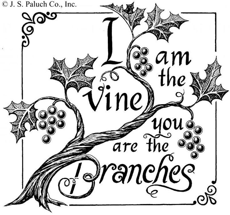 I am the vine you are the branches clip art google for Vine and branches coloring page