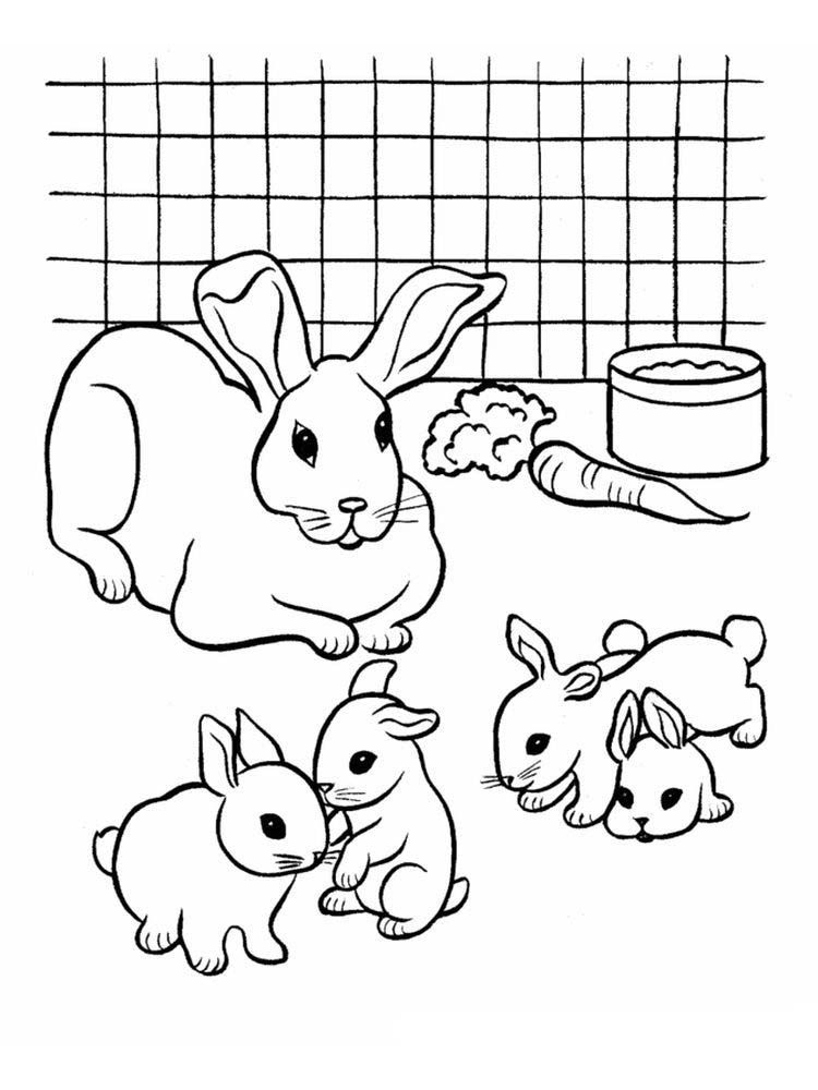 Rabbit Coloring Pages For Adults Rabbits Are Small Mammals With Short Smooth Adults Bunny Coloring Pages Animal Coloring Pages Rabbit Colors