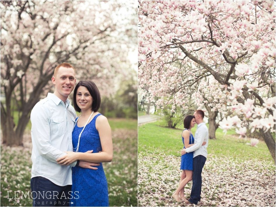 Engagement Pictures Spring Blooming Tree Indianapolis Indiana Indianapolis Wedding Photographer Indianapolis Wedding Fall Wedding Photos