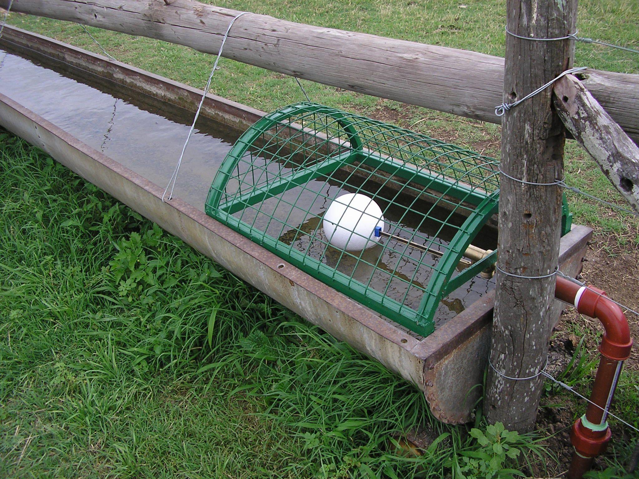 Automático Bebedor Bebedero para Ovejas Pig Lechones Ganado Ganado Agua Bebedero