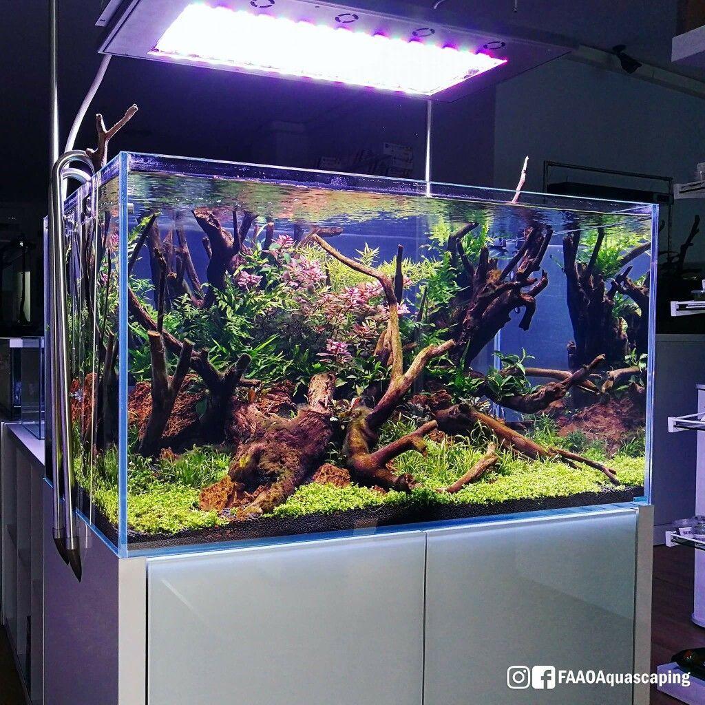 Diy Aquascape Lighting Ideas Aquarium