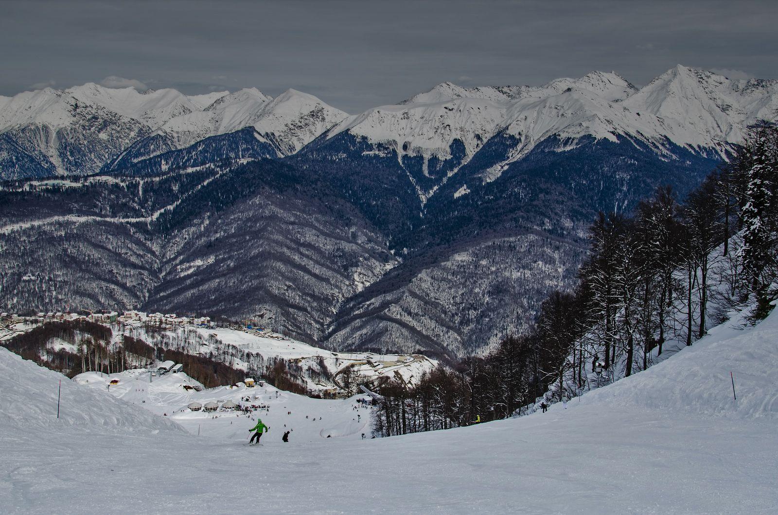 The Sochi Winter Olympics