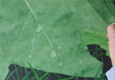 Como pintar Raindrops em uma folha em Aquarela | Características | Painters online