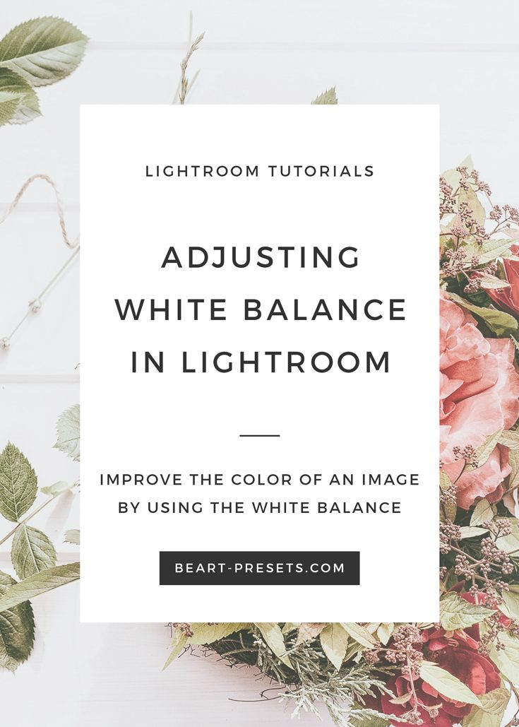 How to set white balance in lightroom