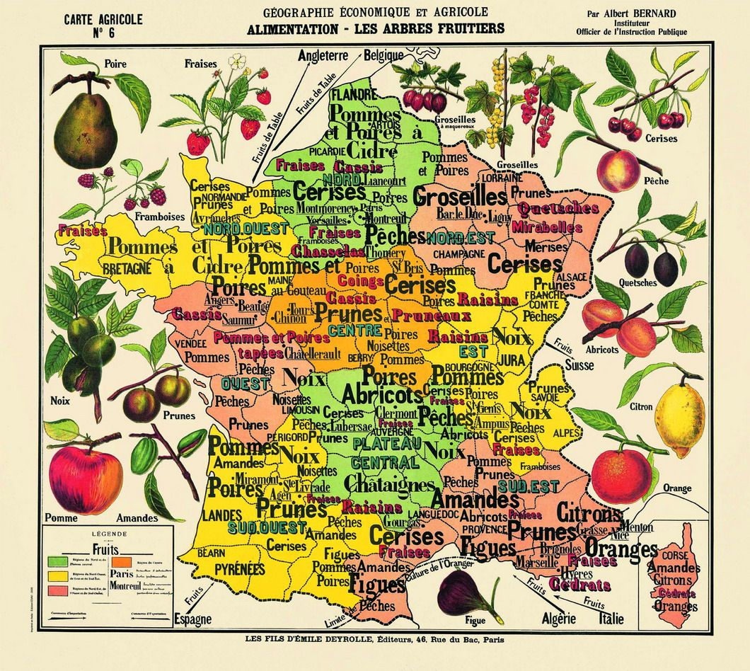 Ma carte de géographie préférée avec les fruits / Deyrolle