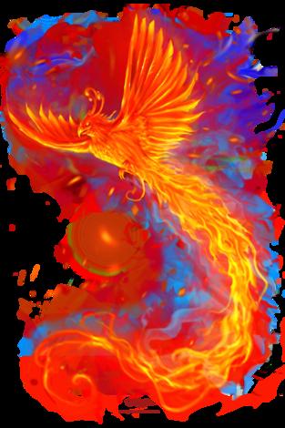 Pin By Fleur De Rooij On T Shirt Design Phoenix Design Phoenix Bird Phoenix Tattoo