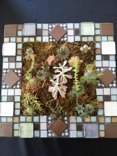 Living succulents wall garden in a large by UrbanSucculent on Etsy, $261.00