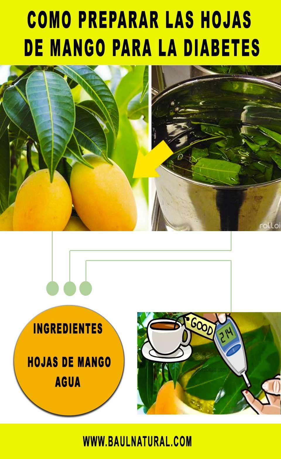 agua de hojas de mango para bajar de peso
