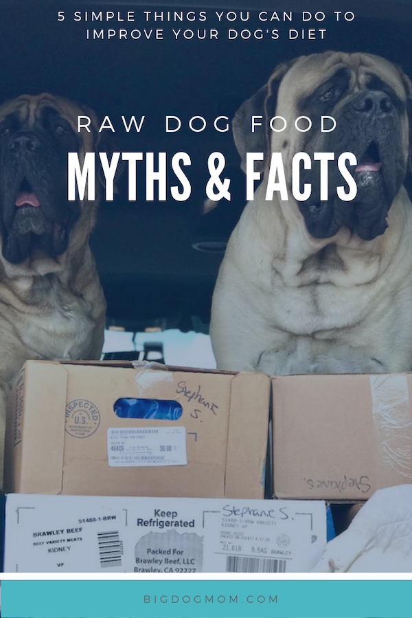 Raw Dog Food The Myths Facts And Future Of Raw Feeding Raw Dog Food Recipes Raw Dog Food Diet Dog Food Recipes
