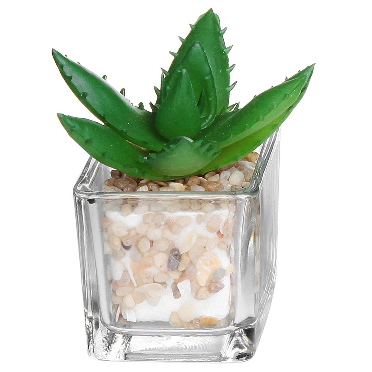Amazoncom  Small Glass Cube Artificial Plant Modern Home Decor