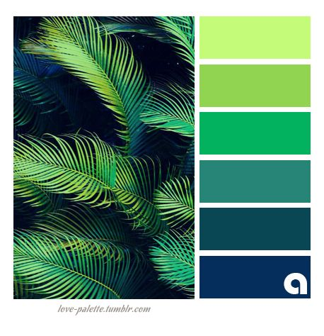 Palettes of life love of color hues of feelings colors for Tropical house color schemes