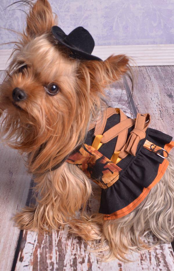 Charlotte\'s Corset-Style Small Breed Dog Harness Top PDF Pattern ...