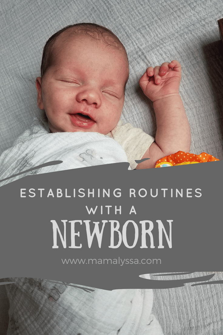 Establishing routines with a newborn baby mamalyssa