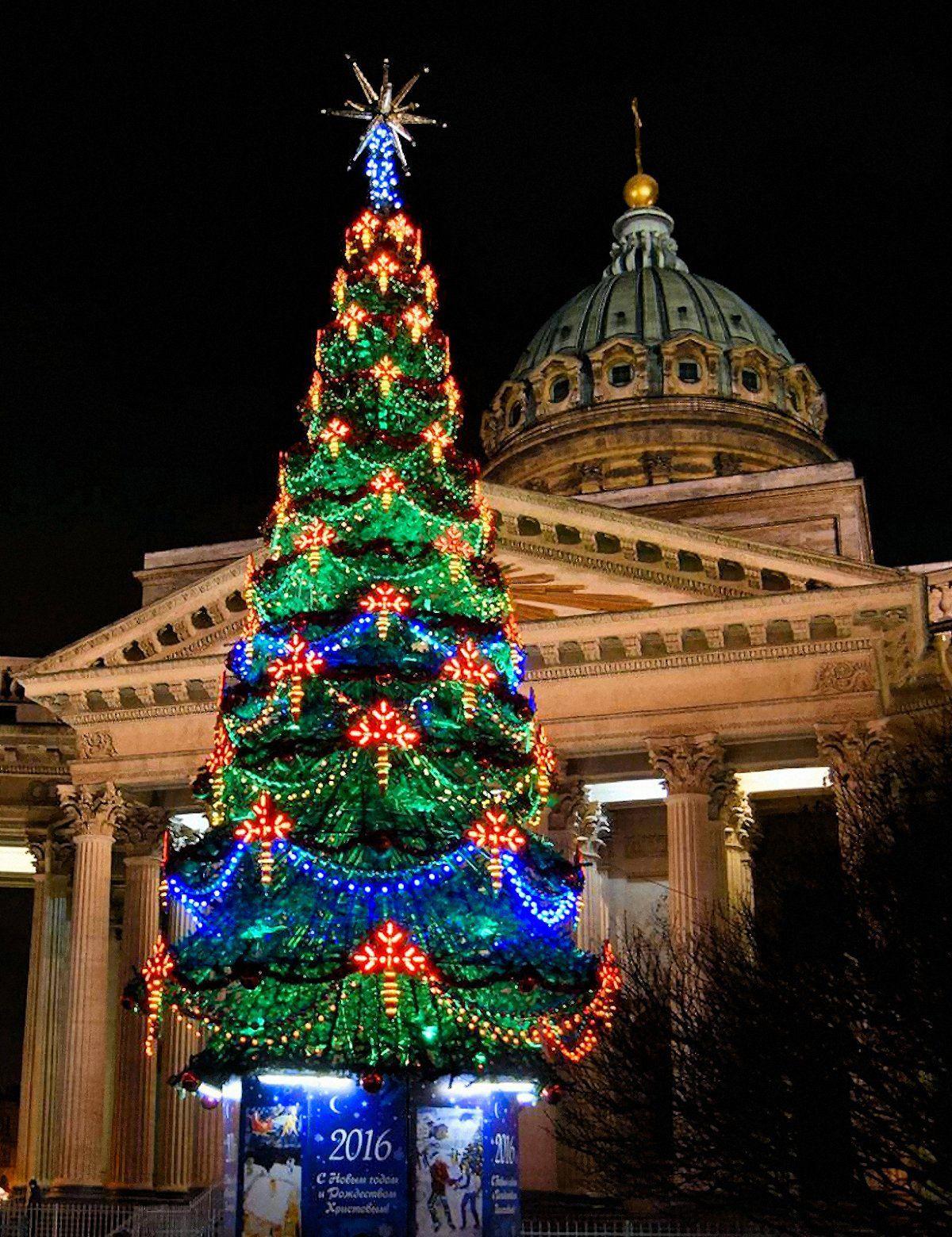 Navidad San Petersburgo Christmas Tree Tree Christmas