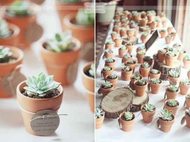 Recuerdos De Bautizo Con Cactus.Suculentas Y Cactus Para Recuerdos De Boda 10 Recuerdos