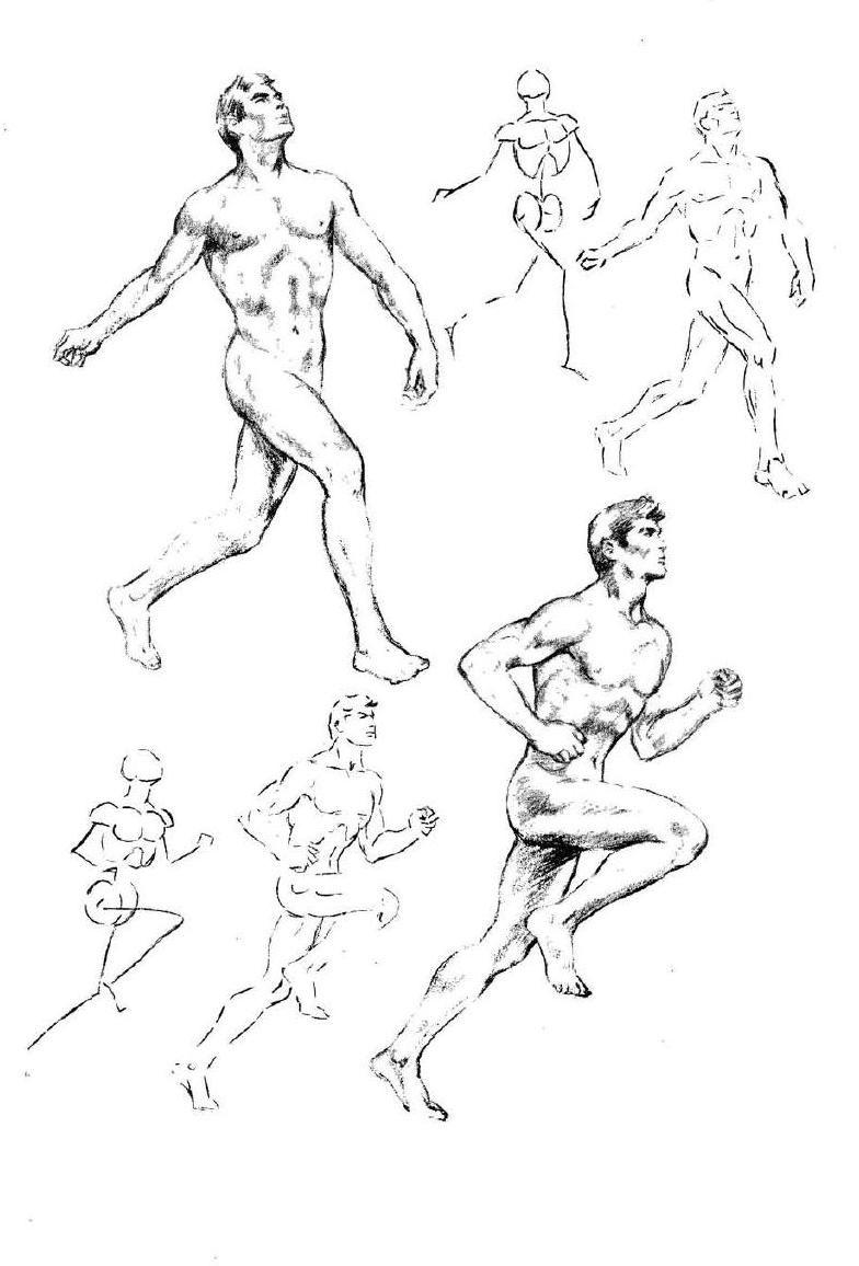Emilio freixas para aprender a dibujar la figura humana emilio figuras humanas y dibujar - Laminas de dibujo artistico ...