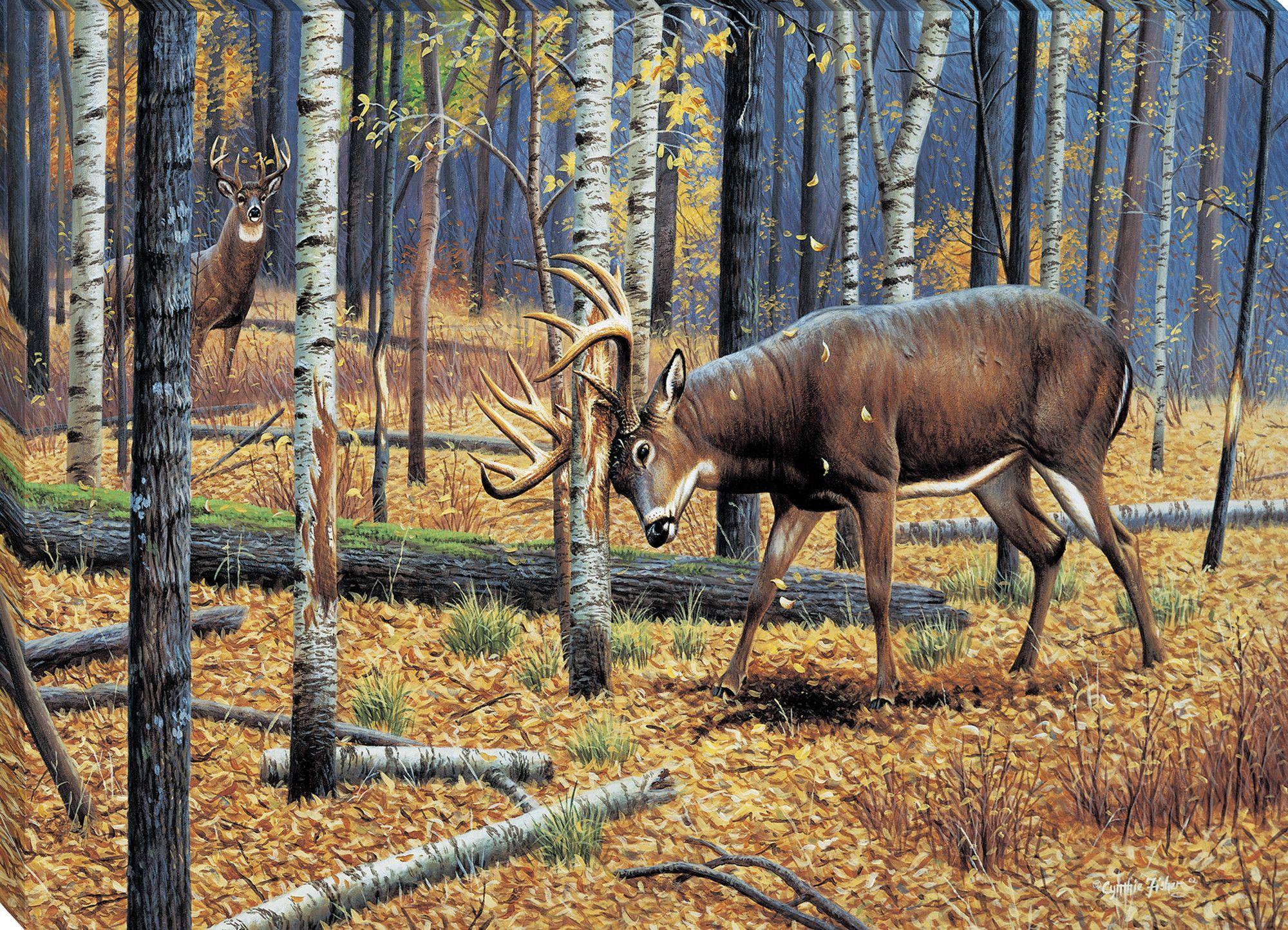 "On The Trail By Greg Alexander Deer Print Framed   19/"" x 16/"""